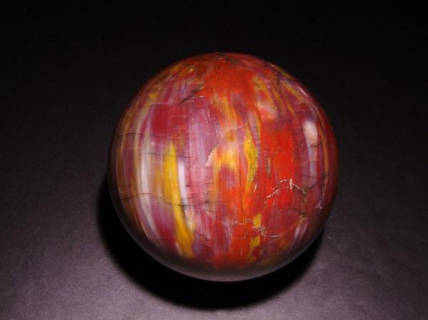 Petrified Wood Sphere-6in. AZ