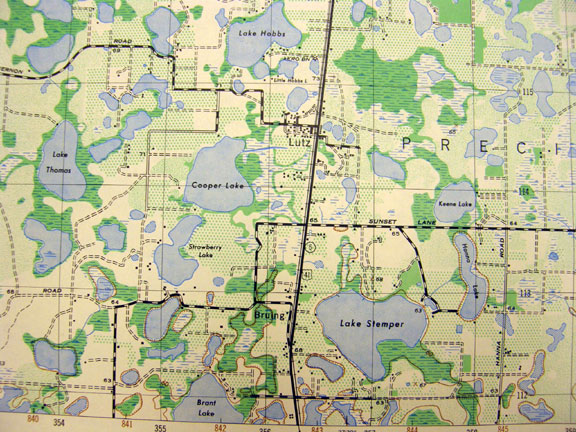 Karst Sinkhole Topography similar to Florida and Shelby County, AL