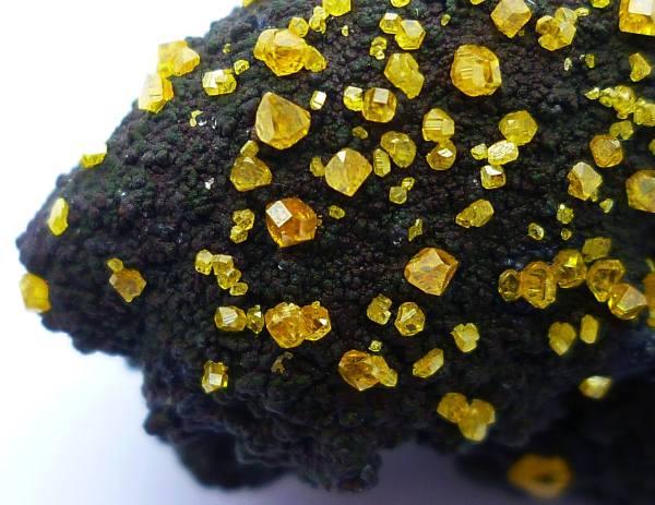 10.  Wulfenite (lead, molybdenium oxide) on Geothite, 18x25x19mm.  Whim Creek Copper Mine, W. Australia.  by Ron Jacobson
