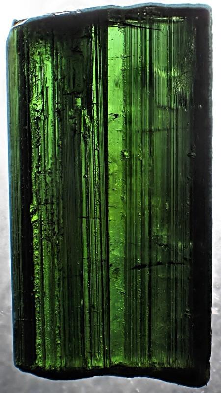 9.  Tourmaline, Verdelite Crystal. Brazil. by unknown