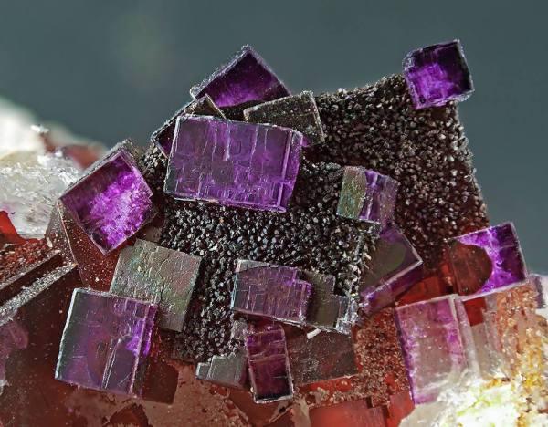 3.  Fluorite, Purple, 16.5mm. Clara Mine, Rankach Valley, Oberwolfach, Olfach, Black Forest, Baden-Wurttermberg, Germany.  Geology Page. cr. Edgar Mullie