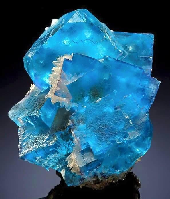 8.  Fluorite, Blue.  Minerva Mine, Hardin Co., IL.  The Mineral Gallery