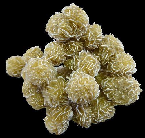 Gypsum, Desert Rose.  by Unknown