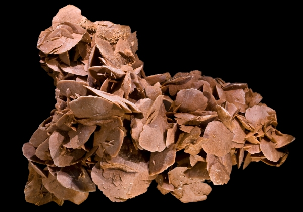 gypsum-roses-s-tunisia-by-didier-descouens