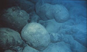 3.8. Submarine Volcano. Pillow Lava. Hawaii. July 1988. OARNURP