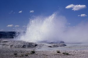 Geyser, Fountain geyser, WY, Yellowstone NP. 1964. bu RG Johnsson