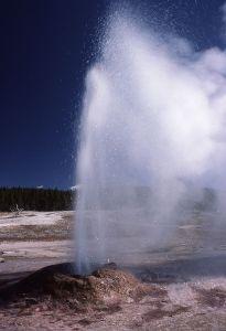Geyser, Pink cone geyser, WY, Yellowstone NP. 1977. J. Schmidt