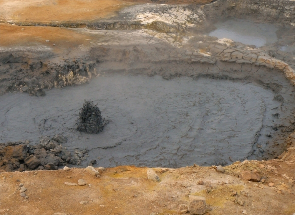 Mudpot, Hvenir, Iceland.  2008.  Ericoides