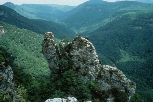Appalachian Mts. Linville-Gorge.  NA colliding with Africa. digitalheritage.org