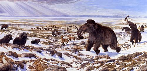 12.  Quaternary Period.  ice_age. imgarcade.com