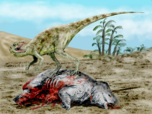 8.  Triassic Age Fossils.  Staurikosaurus feeding on Dicynodont.  by Nobu Tamura