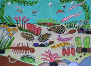 1.  Cambrian Age. humboldt.edu