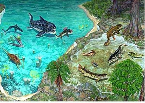 4.  Devonian Marine Transitions. dinosaurs.wikia.com