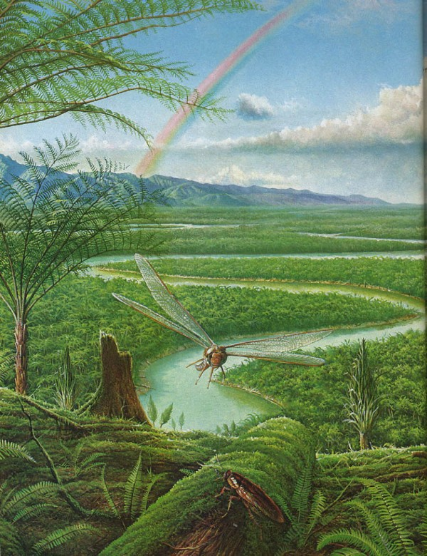 6.  Carboniferous Coal Age. worldofprehistory.wikia.com