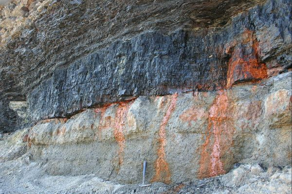 3.  Sedimentary, Coal, Bituminous.  Sydney_Mines_Point_Aconi_Seam, Nova Scotia, Canada. 05-16-2006. by Michael C. Rygel