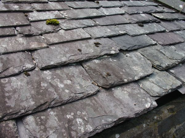 Slate. St. Fagans, Nat. Museum, Wales.  Tannery, Slate Roof.  08-2007.  by Zuerks