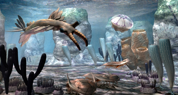 Cambrian diorama. student.societyforscience.org