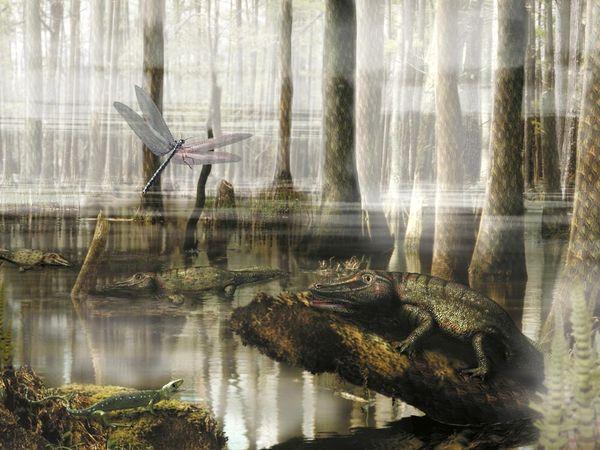 carboniferous-swamp_870_600x450