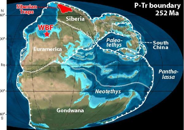 permian-extinction