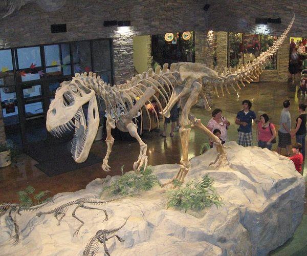jurassic-torvosaurus-meat-eater-redorbit-com