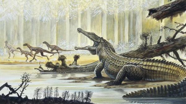 triassic-early-crocodillian-www-ask-com