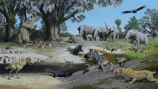 pliocene-flora-and-fauna-21stentech-com