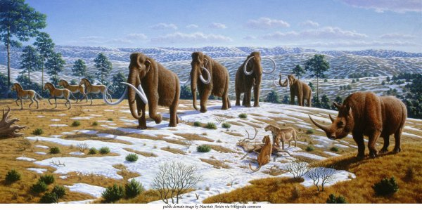 pliocene-ice_age_spain-ww2-humboldt-edu