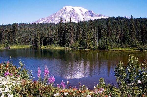 1. Mt. Rainier im Reflection Lake. 2006. by Kelvin Kay