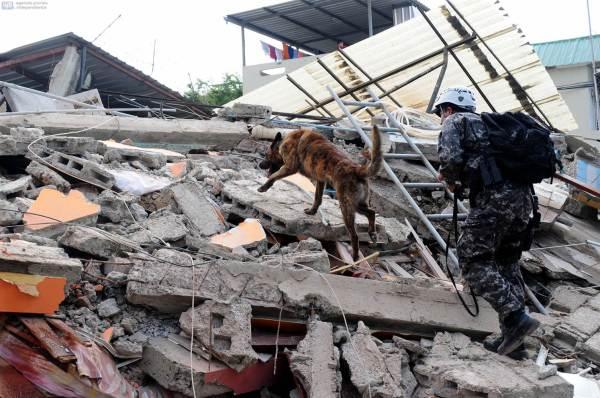 earthquake-ecuador-nbcnews-imgarcade-com